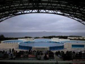 オキちゃんショーのプール